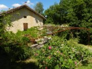 Beautiful Gîte with Private Terrace on 40 Acres, Lot, Midi-Pyrénées