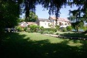 Farmhouse with Successful Gîte Business, Tarn, Midi-Pyrénées