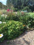 3.5 hectares of garden