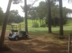 Just one picture of the garden golf parkland