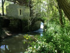 Tranquil Old Water Mill - CURRENTLY RENTED.