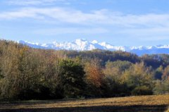 Pyrenees view from the driveway