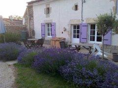 Rustic Cottage near Sauze-Vaussais