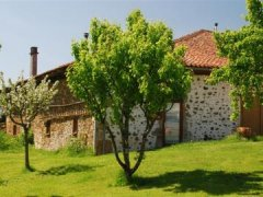 Le Nid d'Hirondelle - Pretty Cottage