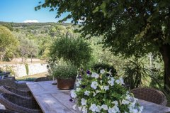 Stunning Bastide in the Worlds Perfume Capital