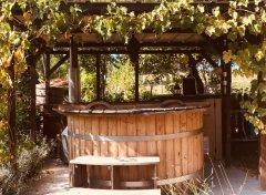 Wood-fired hot-tub