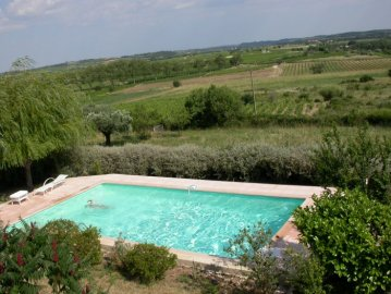 Pool over the vineyards
