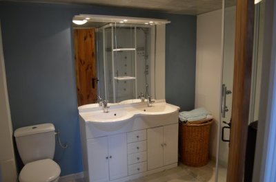 Shower room toilet