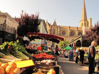 Medieval centre, Market & Cathedral