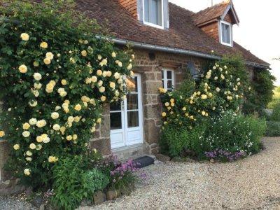 Carefully tended gardens.